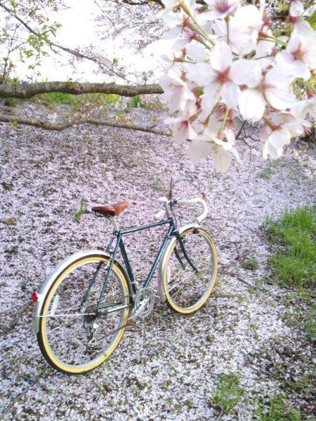 桜舞う木の下で